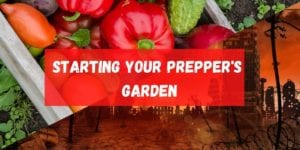 Starting Your Preppers Garden Featured Image